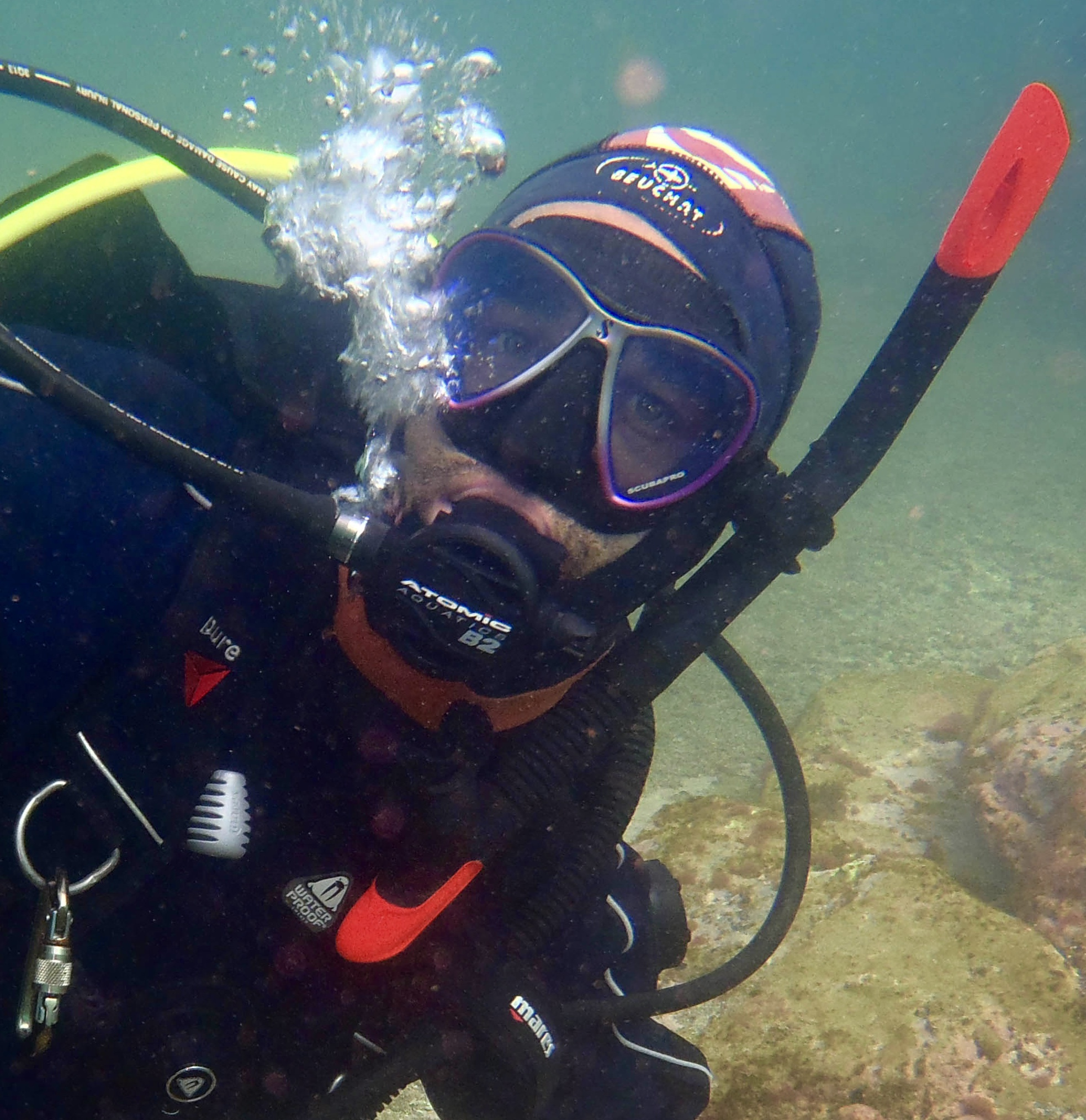 Diving NZ