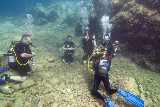 PADI Scuba Diving Career Courses | Dive HQ Westhaven